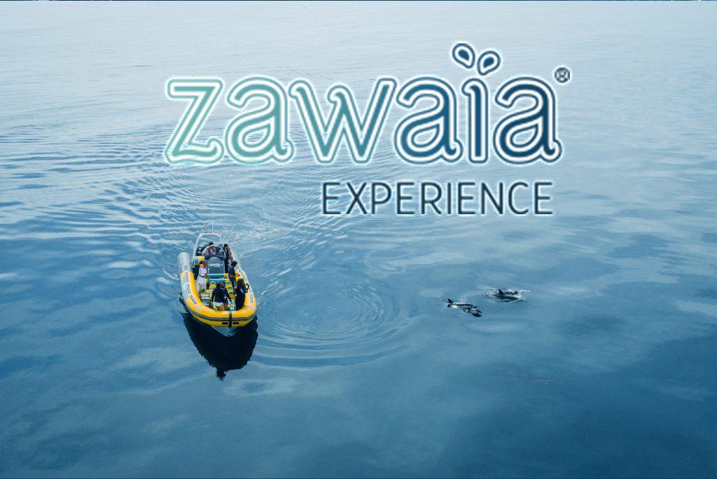 Zawaia Experience